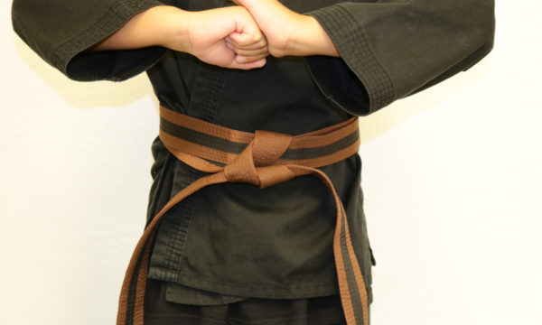 Click Here For Kids Brown Belt (7-12) Course Page