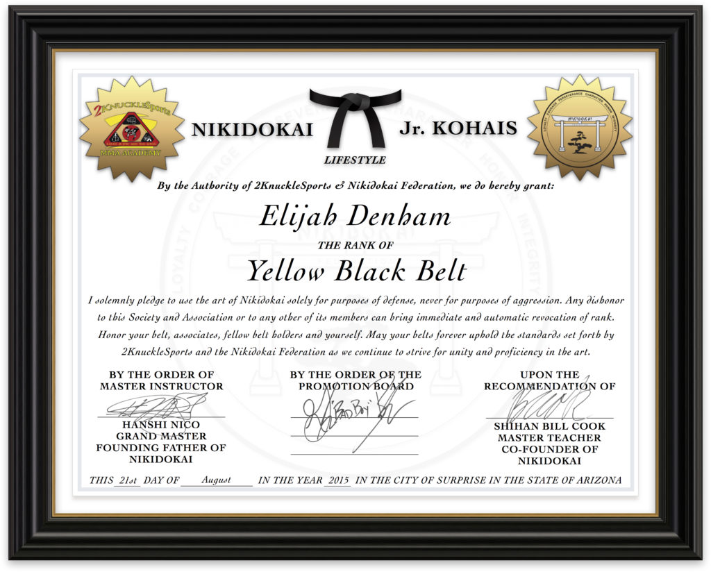 Elijah Denham - Nikidokai Yellow Black Belt