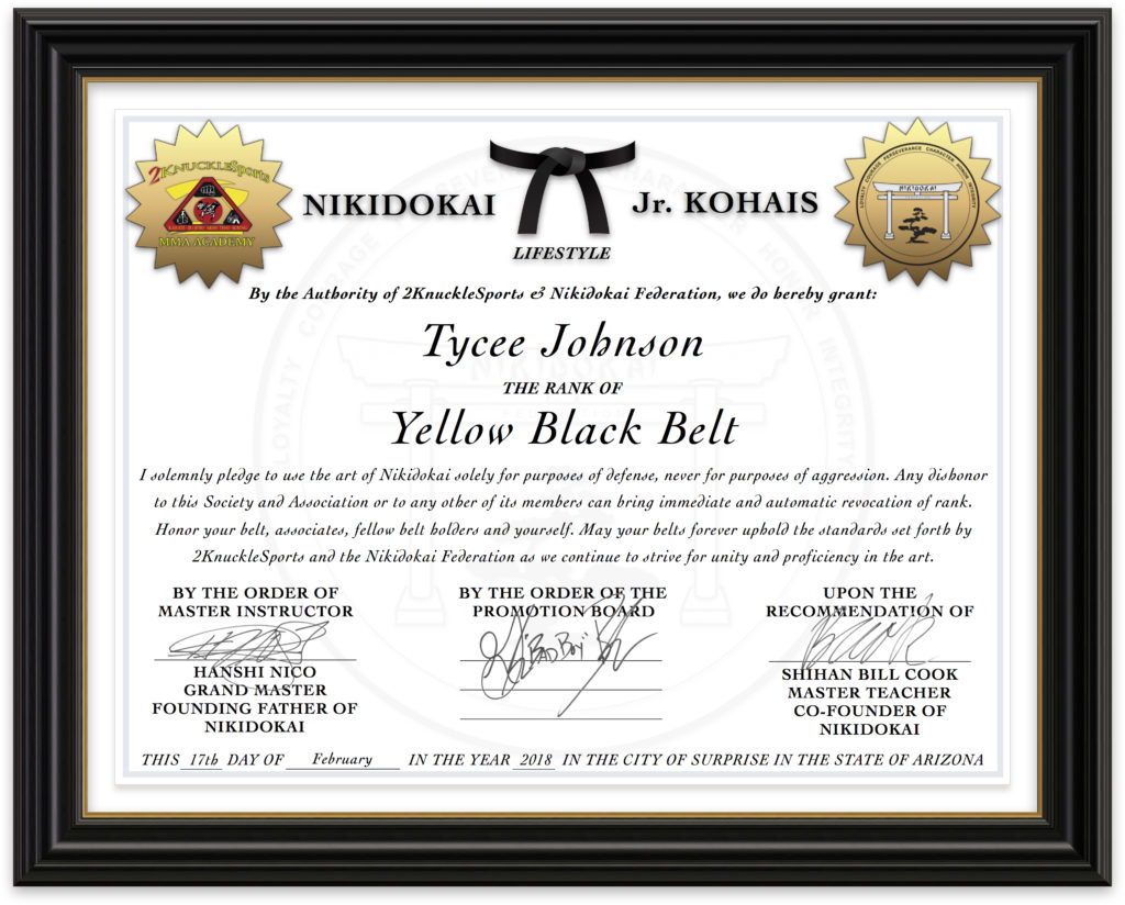 Tycee Johnson - Nikidokai Yellow Black Belt