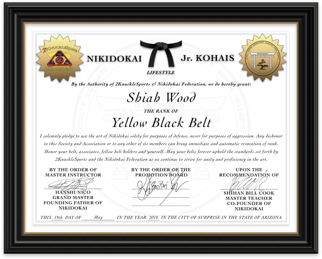 Shiah Wood - Nikidokai Yellow Black Belt
